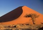 namibijska puščava