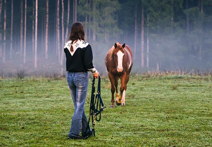 ranch-marina-konj-II-web