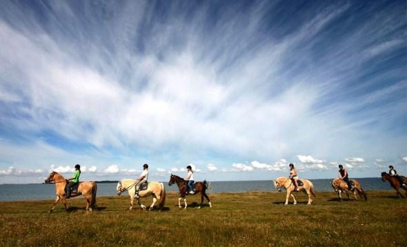 Raziskujte slovenske naravne lepote iz udobja konjskega sedla
