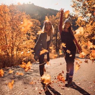 Vse, kar potrebujete to jesen